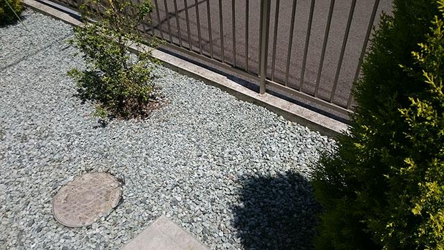 草取りを終えると美しい花壇になりました