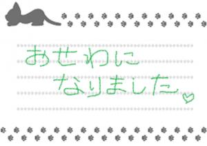 ネコちゃん手紙