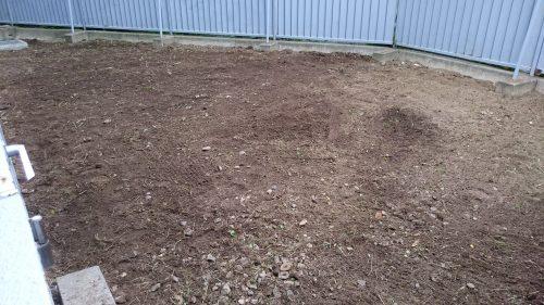 雑草がなくなると雰囲気が変わります