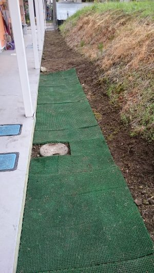 草刈り後は地面まで清潔感に溢れます
