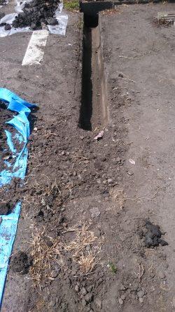 雑草を除去した側溝