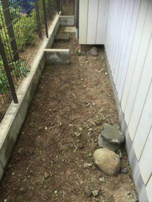 庭の除草後