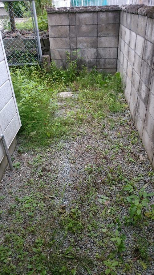 庭の角の雑草