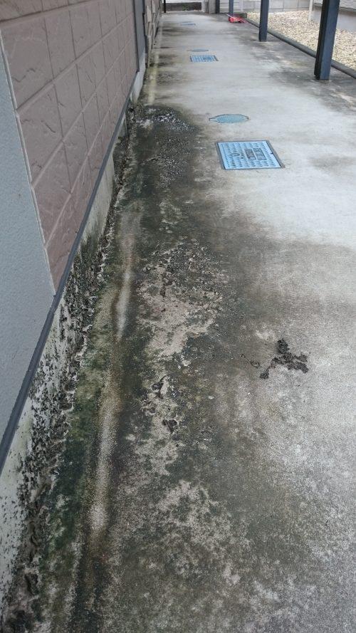 アパート共有部の汚れ