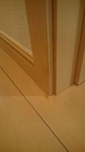 ドアの補修後
